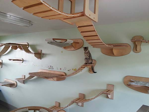 cat-furniture-4