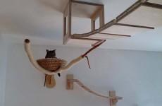 cat-furniture1
