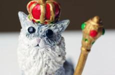 King Cat_Text 2