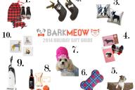 Bark-Gift-Guide-dog